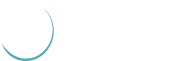 Raptors Cheerleader